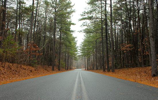 Photo Image of the state of North Carolina